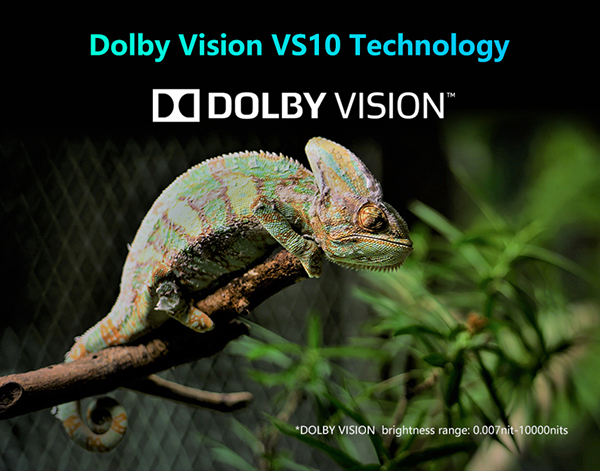 Dolby Vision media player